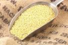 millet wholesale bulk organic yellow hulled real foods