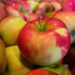 Jabłka na każdą okazję