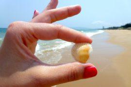 beach-544621_1280