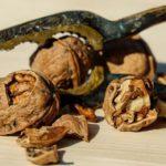 Dlaczego warto wzbogacać dietę orzechami?