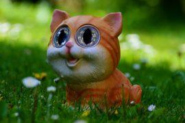 cat-762342_640