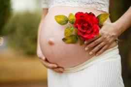 pregnant-woman-1910301_640
