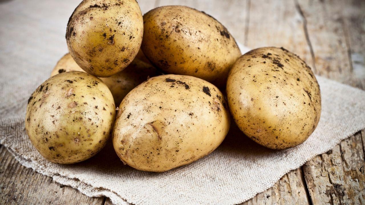 młode ziemniaki w mundurkach przed ugotowaniem