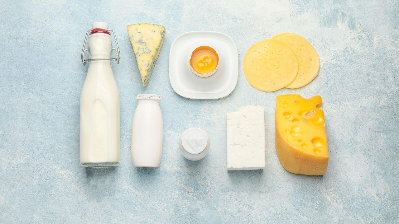 wyroby mleczne leżące obok siebie na szarym tle